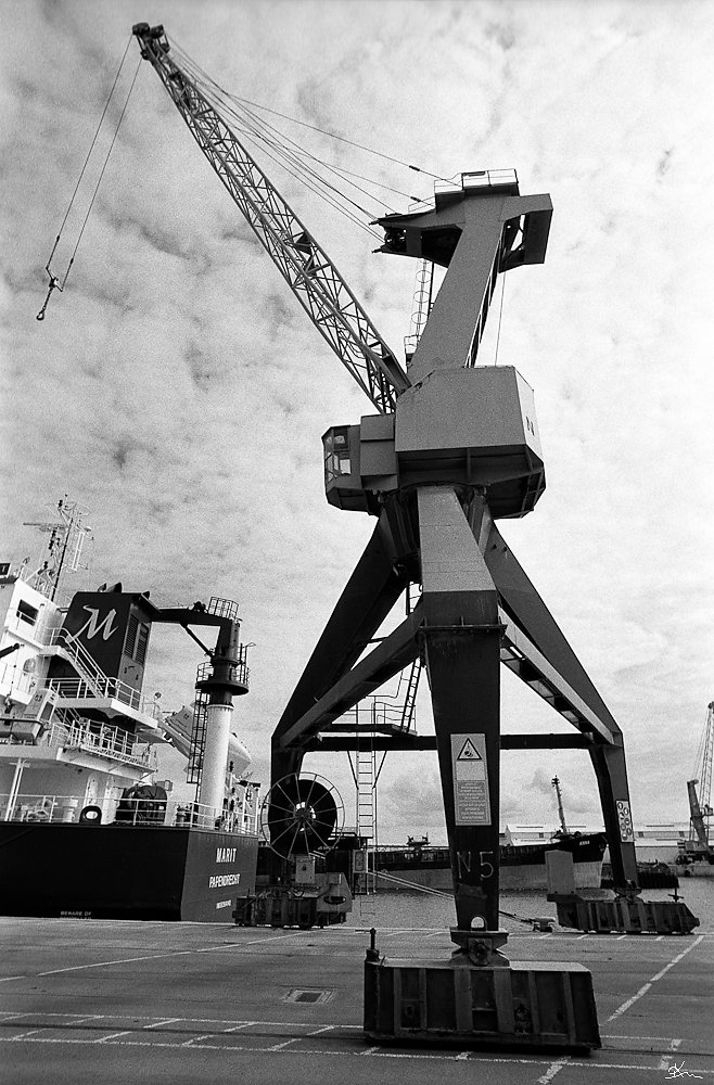 Grue à grains