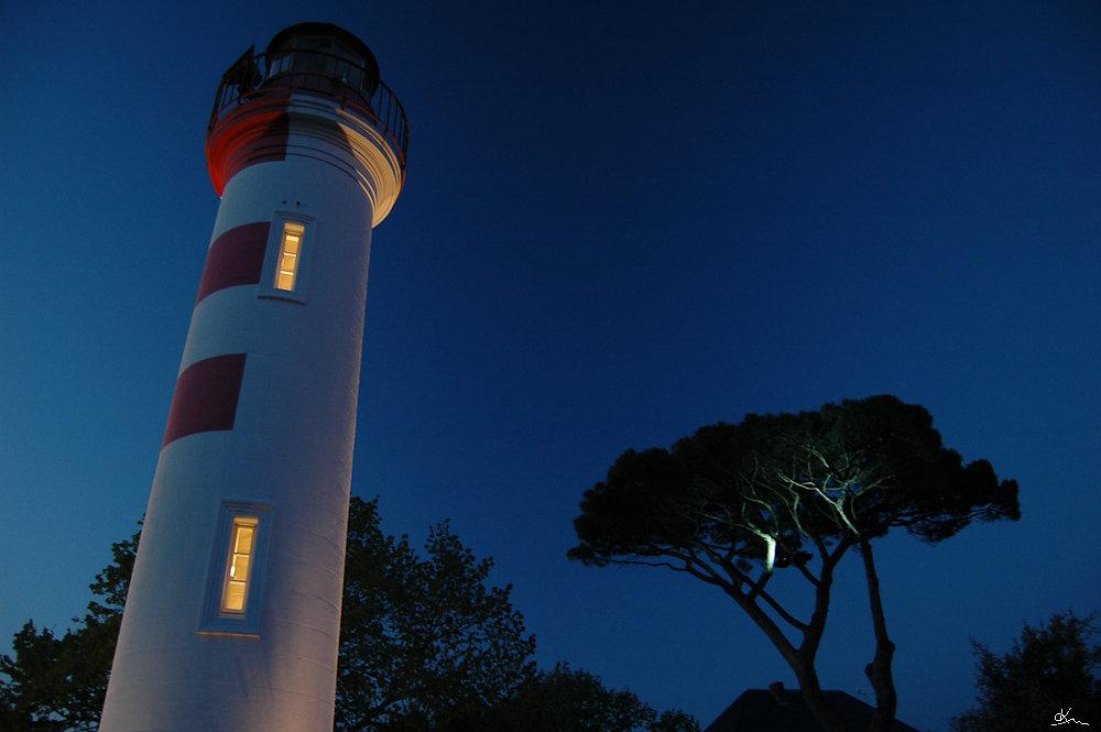 Phare d'alignement et pin - Un des phares d'alignement du Vieux Port, avec le pin du jardin de la capitainerie.