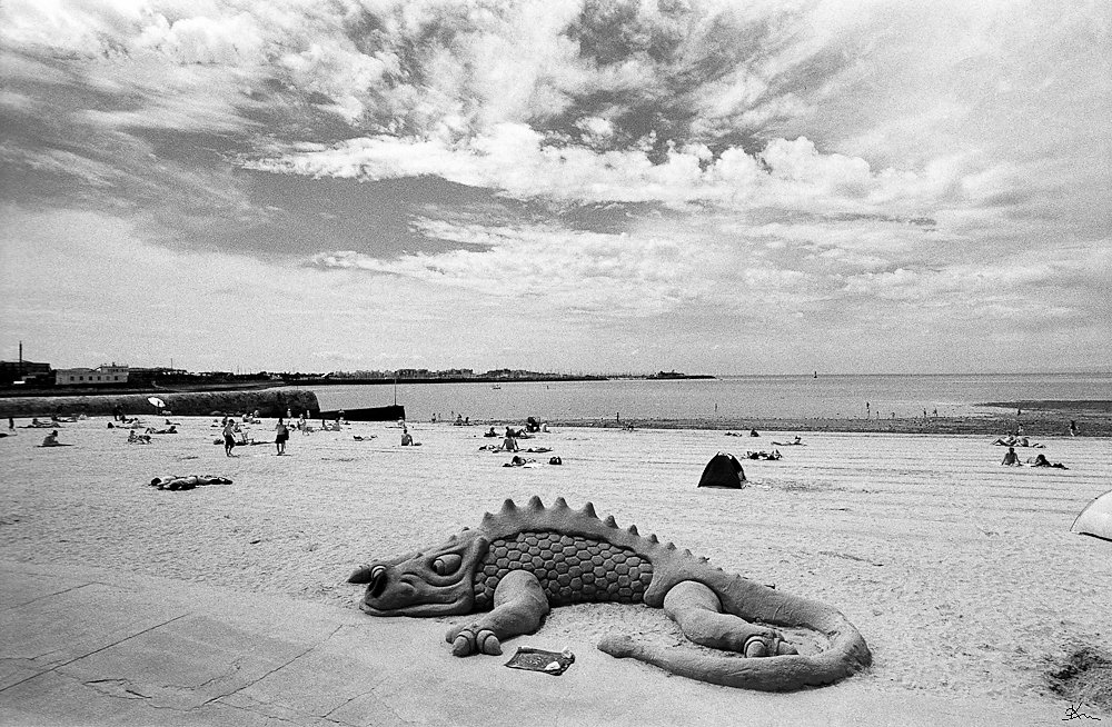 Dragon sur la plage