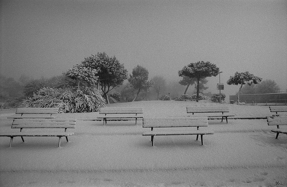 Parc dans la neige